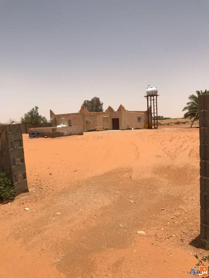 للبيع بالمزاد العلني مزرعة ورثة / عبدالرحمن بن عثمان العنقري ابوعلي بالحماده بشقراء