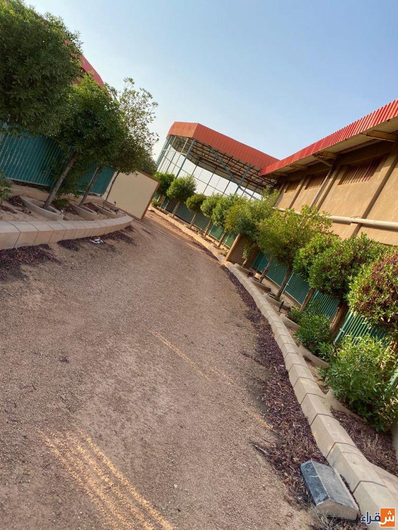 مزرعة للبيع على طريق القصيم ١٠كم شمال أشيقر بصك شرعي لدى أملاك للعقارات