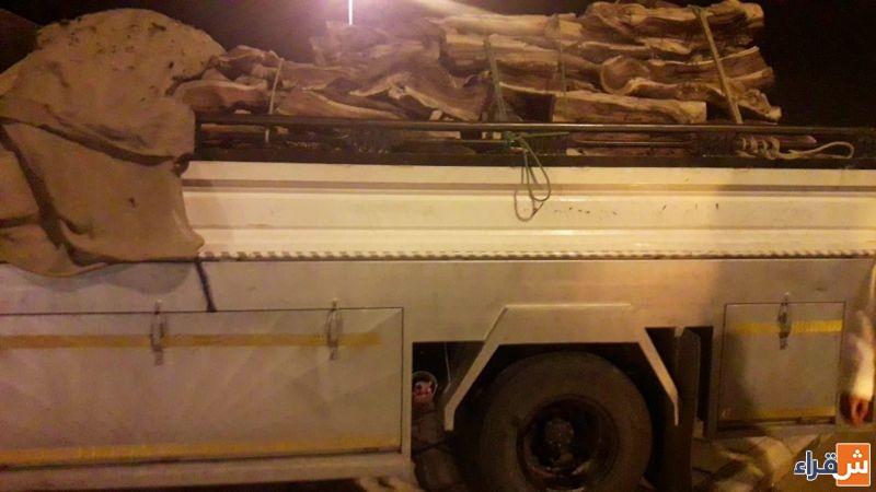 الفرق الميدانية التابعة لمكتب وزارة البيئة والمياه والزراعة بمحافظة شقراء تضبط ( ٢ ) شاحنة محملة بالحطب