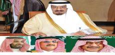 أمر ملكي: محمد بن نايف ولياً لولي العهد، ومحمد بن سلمان وزيراً للدفاع