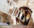مقاول شركة الكهرباء يهدد سكان حي الشفا بحفر عمقها مترين