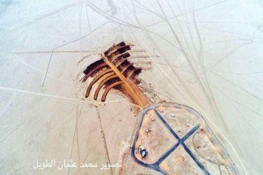 بلدية القصب تنفذ مشروع النخلة في منتزه العكرشية بمجهوداتها الذاتية