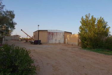مزاد علني في محافظة شقراء على مزرعة قائمة في الحماده لدى إعمار للعقارات