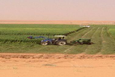 للبيع مزرعة نموذجية بالمستوي بمساحة مليون ونصف عبارة عن ثلاث صكوك شرعية شمال شقراء 60 كم لدى المستشار للعقارات