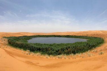 مقترحات للاستفادة من المياه المعالجة في شقراء لتحويل النفود الشرقي إلى واحات خضراء