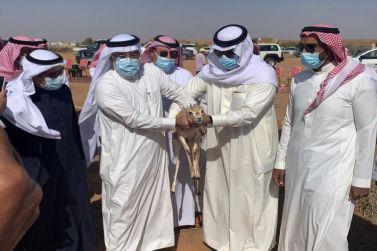 غزال الريم العربي يستوطن منتزه الجرعاء بالقرائن في محافظة شقراء